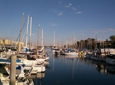 Enjoy your Monday on the marina!