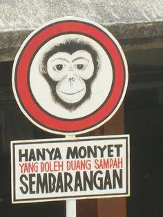 jangan buang sampah sembarangan ,entar u jadi monyet