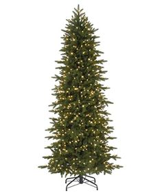 We need a slim tree with lots of white lights. But I love a realistic looking tree.... Oregonian Slim Christmas Tree
