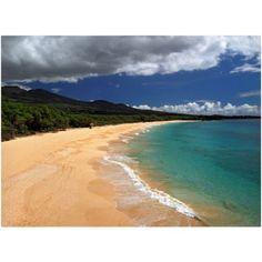 Trademark Fine Art Makena Maui Canvas Art by Pierre Leclerc, Size: 16 x 24, Multicolor