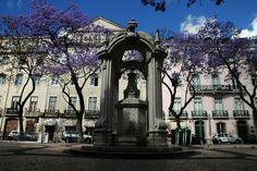 Chafariz do Carmo (Lisboa) - Distrito de Lisboa   Guia da Cidade   Região de Lisboa