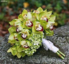 Green Cymbidium orchids and white hydrangeas  = lovely bouquet