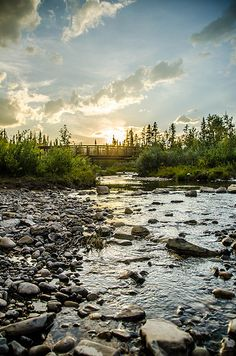 River - Alberta River, Explore, Mountains, Nature, Naturaleza, Exploring, Nature Illustration, Outdoors, Rivers