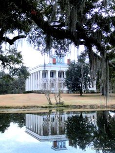 Greenwood Plantation - St. Francisville, Louisiana  - Doric Columns - photo taken by Sandy Robert