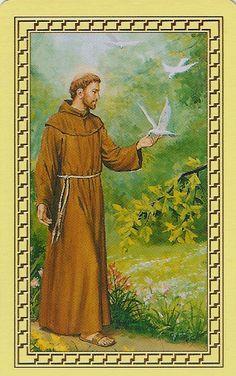 Image result for saint francois d'assise