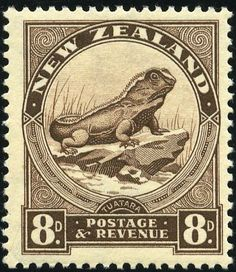 New Zealand 1936 SG Tuatara Lizard Fine Mint SG Scott 212 Condition Fine MNH Only one post charge applied on multiple purchases Details Old Stamps, Rare Stamps, Vintage Stamps, Vintage Art, George Vi, Vanuatu, Reptiles, Lizards, Commonwealth