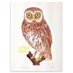 Chris Andrews - Owl, Limited Edition Screenprint, 25x35.5cm