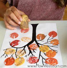 Con patatas u otros alimentos, podemos utilizarlos para crear sellos y plasmarlo … – Basteln – herbst Kids Crafts, Fall Crafts For Kids, Art For Kids, Autumn Art Ideas For Kids, Summer Crafts, Easter Crafts, Tree Crafts, Kids Diy, Crafts For Children