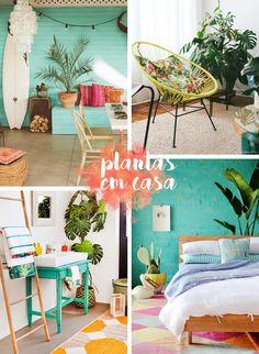 Plantinhas Dentro de Casa!! Blog Remobília