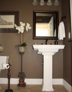 Traditional Powder Room Design, Pictures, Remodel, Decor and Ideas - page 36