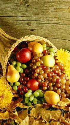 A Thanksgiving cornucopia