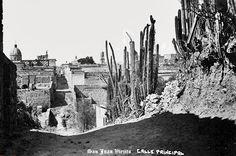 Calle de San Juan de los Lagos Jalisco Mexico 1900