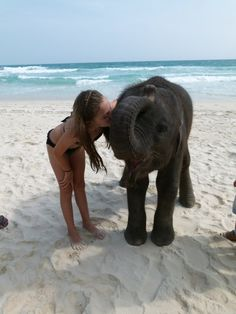 i want to go kiss a baby elephant on a beach somewhere.