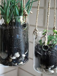 This is a good idea. Just drill holes in the glass and tie up. Hanging plants with no drips.