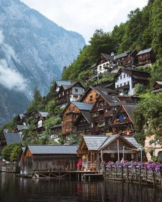 Hallstatt is so peaceful when the swans graceful pass by under beautiful morning light. Places Around The World, Around The Worlds, Purpose Of Travel, Hallstatt, Village Photos, Destinations, Big Photo, Beautiful Morning, Beautiful Places