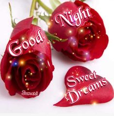 Beautiful Good Night Quotes, Good Night Greetings, Good Morning Good Night, Beautiful Roses, Christmas Ornaments, Holiday Decor, Blessings, Memories, Baby