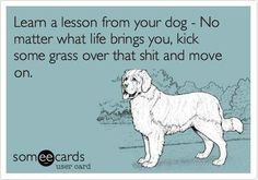 Isn't this  the best lesson.    ;-)