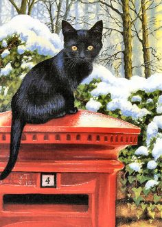 Black Cat I like this picture. Incensewoman