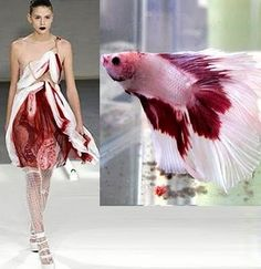 Nature & Animal Inspired « Luxe Gifts Fabulous Blog valentino