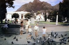 Children and birds in the shadow of Lion's Head, The Gardens, Cape Town, South Africa, photograph by Etienne du Plessis. Dublin, Cape Town South Africa, Local Attractions, Most Beautiful Cities, Old Photos, Vintage Photos, West Coast, Travel Destinations, Dolores Park
