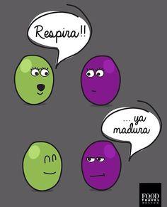 Vitis Vinifera, Humor Grafico, Spanish Quotes, Mexico Travel, I Laughed, Hilarious, Lol, Comics, Memes