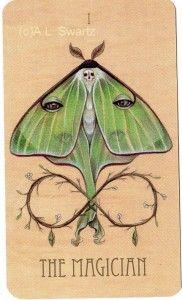 The Wooden Tarot Magician  Check out the cool interpretation of the Magician card by @gardenskull. New selfie #tarot deck. http://tarotbyarwen.com/?p=18066