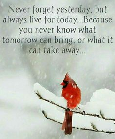 learn from the past..move forward..& be strong