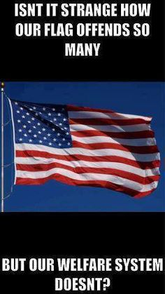 Isn't it strange how our flag offends so many, but our welfare system doesn't?