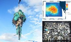 The 'great Pacific garbage patch' is three times the size of FRANCE