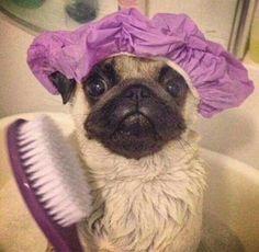 Hora de baño