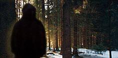 Is #Bigfoot Real? Emerging #Scientific Evidence