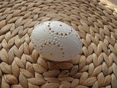klikni pro další 114/142 Carved Eggs, Egg Art, Easter Ideas, Jar, Carving, Rose, Wood, Craft Work, Easter Activities