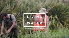 Māori engagement & collaboration for healthy waterways.