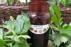 Jak si vyrobit domácí bylinné extrakty Kraut, Hot Sauce Bottles, Korn, Life Is Good, Salsa, Food And Drink, Healing, Herbs, Homemade