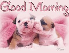 Good Morning, Happy Wednesday