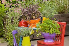 Creative Containers- Colander Planters  could also attach to wall or fence