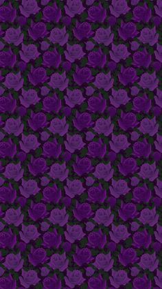 Black and purple flowers Flowery Wallpaper, Aesthetic Pastel Wallpaper, Colorful Wallpaper, Purple Backgrounds, Wallpaper Backgrounds, Black And Purple Background, Plum Art, Flowers Nature, Purple Flowers