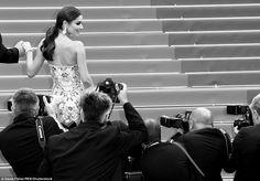 Готова к съемке крупным планом: фотографы пробрались к подножию лестницы, чтобы получить более близкий взгляд Шерил