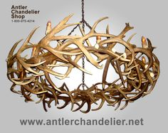 21 best antler chandeliers images on pinterest antler lights deer extra large antler chandeliers antler lighting solutions from antler chandelier shop aloadofball Image collections