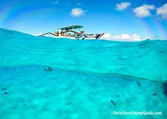 We share the top Bora Bora lagoon tours and the best lagoon excursions. Bora Bora Activities, Life Is An Adventure, Blue Lagoon, Labs, Live Life, Places To Go, Tours, Water, Outdoor