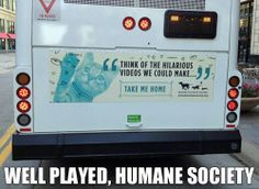 Well Played humane society