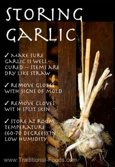 Here in the south eastern U.S., there's still time to plant garlic and this article tells you how to grow it, select the right variety, harvest it and store it!