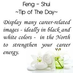 Feng Shui Tip of the Day: Display many career-related images - ideally in black and white colors - in the North to strengthen your career energy. Get the Vastu experts advice for your home from renowned Vastu Expert Ms. Feng Shui Tips For Home, Feng Shui Home Office, Feng Shui Guide, Feng Shui House, White Colors, Black And White Colour, Diy Organisation, Organizing, Fen Shui