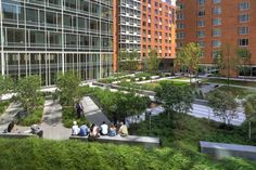 THE AVENUE - courtyards with innovative stormwater management strategies