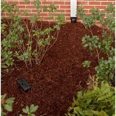 84 Best Downspout Drainage Images In 2019 Drainage