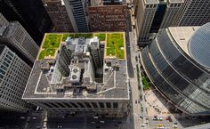 Chicago city hall garden is estimated to save about $5,000 a year in energy costs.