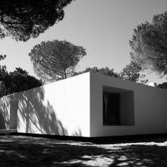 Frederico Valsassina . Summer home . COLARES  (10)