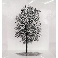 Miniature Tree by Zadok Ben David | $80.00