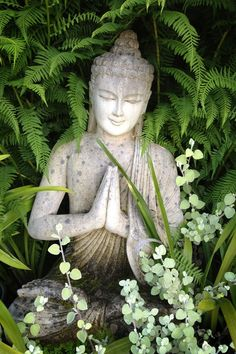 Buddha and the Dharma : Photo