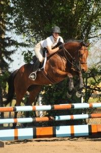 """""""I never just jump young horses around over single fences, it doesn't help teach them to jump in correct form. Slightly short grids are wonderful homework."""" - Rob Gage"""